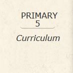 Primary 5 Curriculum